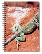 Mountain Boomer Spiral Notebook