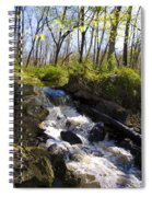 Mountain Creek In Spring Spiral Notebook