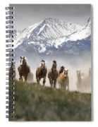 Mountain Dust Storm Spiral Notebook