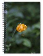 Mountain Flower Spiral Notebook