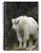 Mountain Goat Kid Spiral Notebook