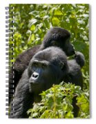 Mountain Gorilla With Infant  Spiral Notebook