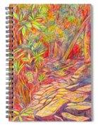Mountain Lake Trail Spiral Notebook