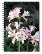 Mountain Lillies Spiral Notebook