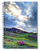 Mountain Meadow Of Flowers Spiral Notebook