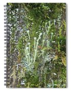 Mountain Moss Lichens And Fungi Spiral Notebook