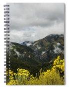 Mountain Rain Spiral Notebook