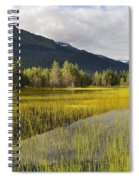 Mountain Reflection Spiral Notebook