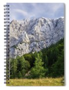 Mountain Scene Spiral Notebook