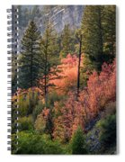 Mountain Side Colors Spiral Notebook