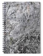 Mountain Side Spiral Notebook
