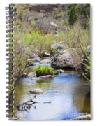 Mountain Stream In Castlewood Canyon State Park Spiral Notebook