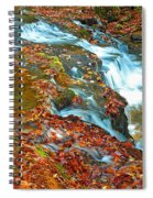 Mountain Stream Waterfall Autumn Spiral Notebook