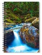 Mountain Streams Spiral Notebook