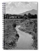 Mountain Valley Stream Spiral Notebook