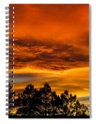 Mountain Wave Cloud Sunset With Pines Spiral Notebook