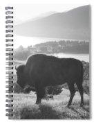 Mountain Wildlife Spiral Notebook