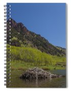 Mountains Co Maroon Lake 4 Spiral Notebook
