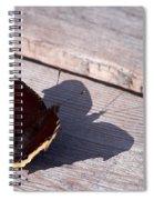 Mourning Cloak Spiral Notebook