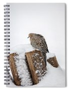 Mourning Dove In Snow Spiral Notebook
