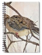 Mourning Dove - Sing No Sad Song For Me #2 Spiral Notebook