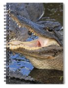 Mouth In The Middle Spiral Notebook