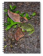 Mouthful Of Moth Spiral Notebook