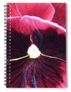 Movember Light Spiral Notebook