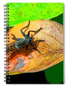 Mr. Big Eyes Spiral Notebook
