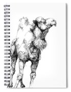 Mr Camel To You Spiral Notebook