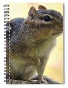 Mr. Chips Spiral Notebook
