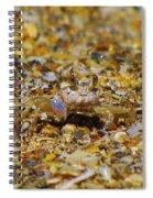 Mr. Crabby Spiral Notebook