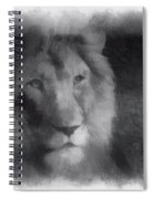 Mr Lion Photo Art 01 Spiral Notebook