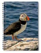 Mr. Puffin Spiral Notebook
