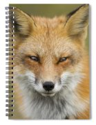 Mr Red Portrait Spiral Notebook