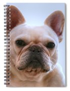 French Bulldog Seriously Spiral Notebook