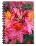 Mt St Helens Azalea Spiral Notebook