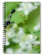 Mud Dauber In The Flowers Spiral Notebook