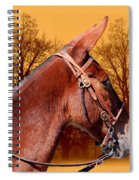 Mule Days - Westmoreland Tn  9-28-13 Spiral Notebook