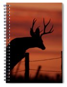 Mule Deer Buck Jumping Fence At Sunset Spiral Notebook