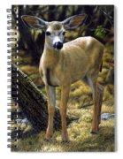 Mule Deer Fawn - Monarch Moment Spiral Notebook