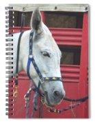 Mule Head Spiral Notebook