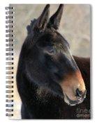 Mule Portrait 2 Spiral Notebook