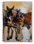 Mules In Full Dress Spiral Notebook