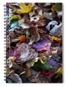 Multicolored Autumn Leaves Spiral Notebook
