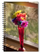 Multicolored Daisies On Window Sill Spiral Notebook