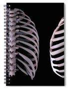 Multiple View Of The Rib Cage Spiral Notebook