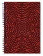Multiplicity Mandala 16x9 Spiral Notebook