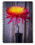 Mum Against Old Wall Spiral Notebook