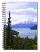 Muncho Lake View Spiral Notebook